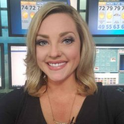Lisa Meadows Biography, WCCO, Age, Weather, Height, Weight, Wikipedia